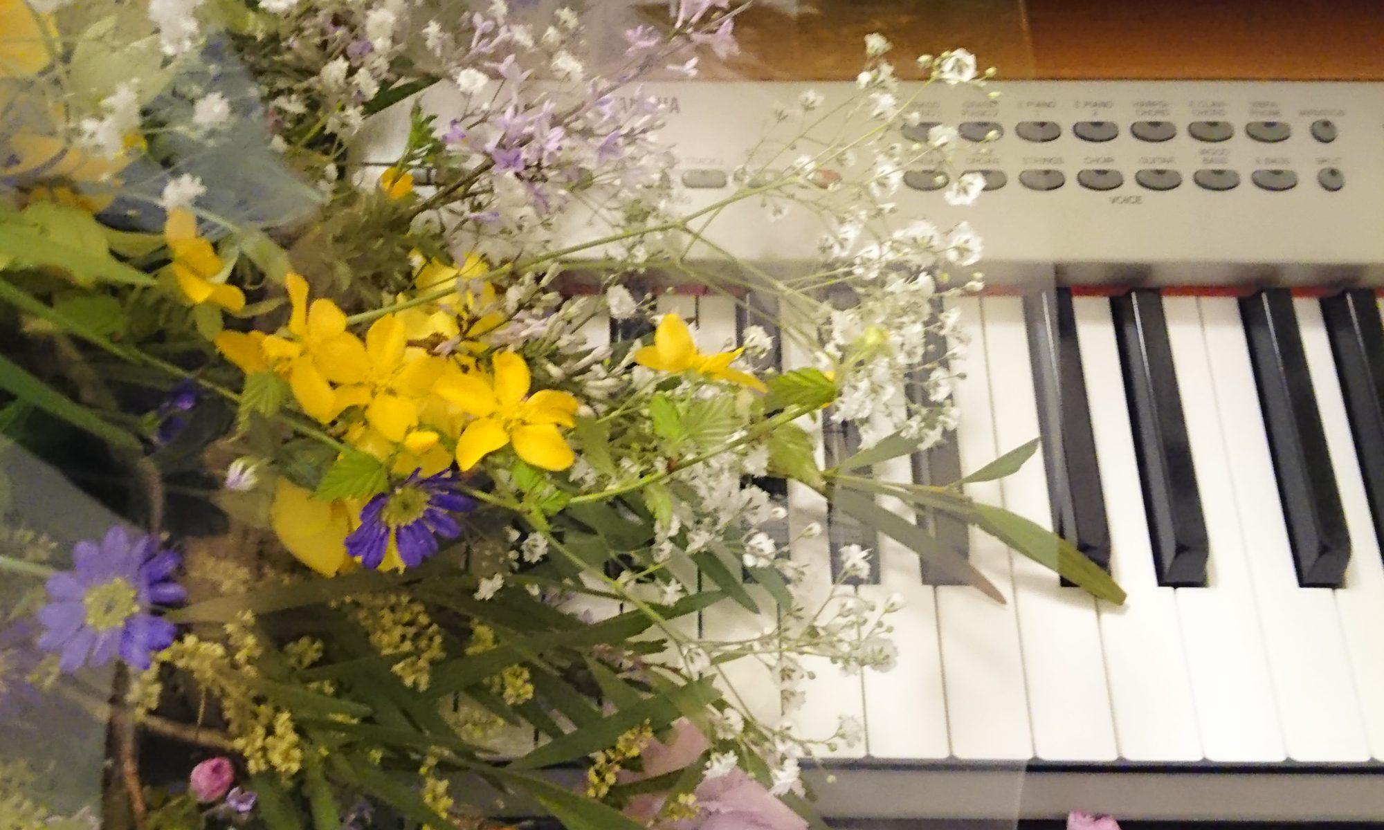 ハグメイツ Hagu-matesの音楽教室